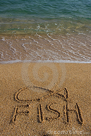 A fish symbol drawn in the sand