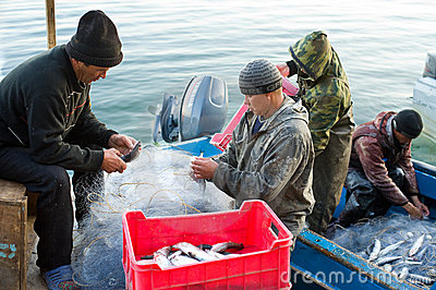 Fish unloading Editorial Stock Image