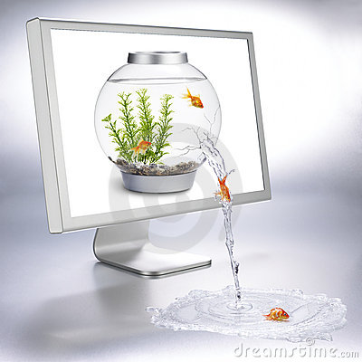 Fishbowl flow
