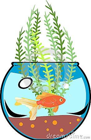 Fishbowl with goldfish