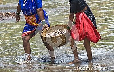 Fish bucket