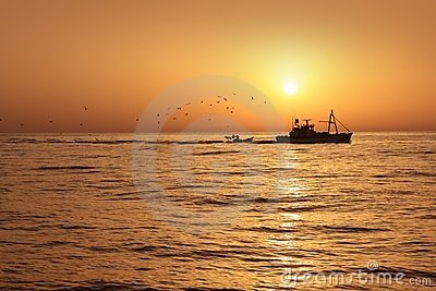 Fisherboat professional sardine in sunrise