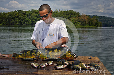 Fisherman, Panama Jungle Editorial Image