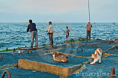 Fishermen and cats Editorial Photography