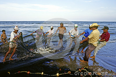 Fishermen working Editorial Photo