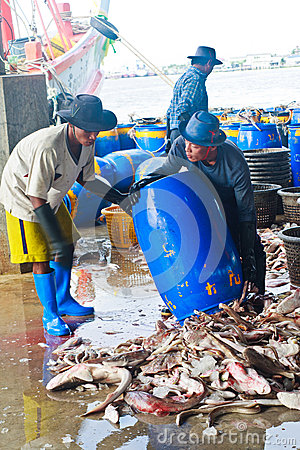 Fishermen working in harbor Editorial Stock Image