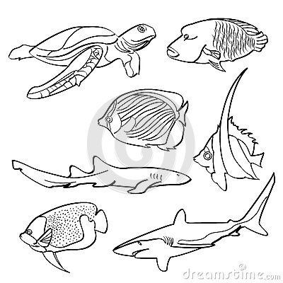 Free Fishes Collection Royalty Free Stock Images - 51051889
