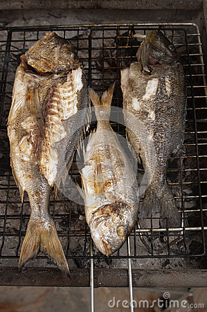 Free Fishes On Bbq Royalty Free Stock Images - 26630759