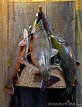 Fishing Basket With Fish