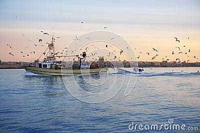 Fishing boat seagull on sunset sunrise