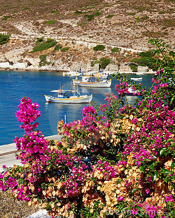 Fishing boats and bougainvillea