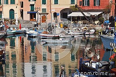 Fishing boats in Camogli