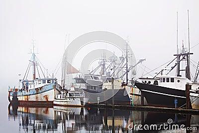 Fishing boats in harbor fog