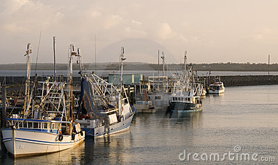Fishing boats in Hervey Bay/Au