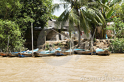 Fishing boats and huts along Mekong River