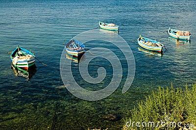 Fishing boats at the shore