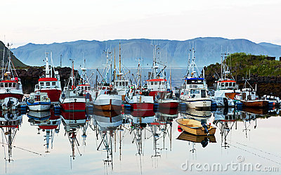 Fishing business boats