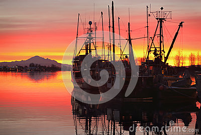 Fishing Fleet Sunrise, Steveston