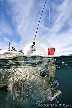 Fishing For Giant Trevally - Popping Editorial Photo