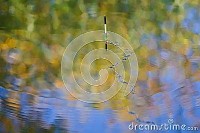 Fishing line on lake surface