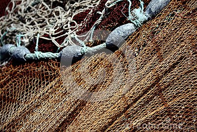 Fishing net and weights