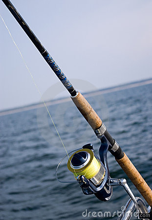 Fishing rod and sea