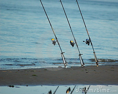 Fishing rods on the shore