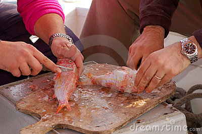 Fishing series - cleaning a fresh fish