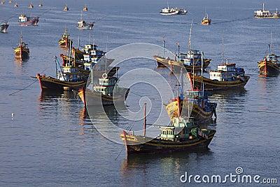 Fishing in Vietnam Editorial Stock Image