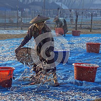 Free Fishing Village On Ngapali Beach - Myanmar (Burma) Royalty Free Stock Photo - 29847375