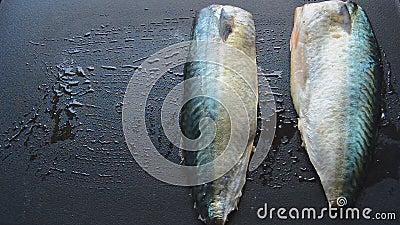 Fisk som placerats på ytan av varmpanna lager videofilmer