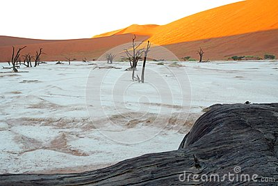 Fist light in the dead vlei