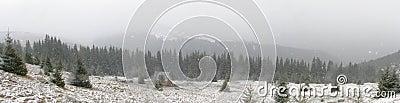 Fist snowfall
