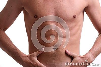 Fit muscular male torso