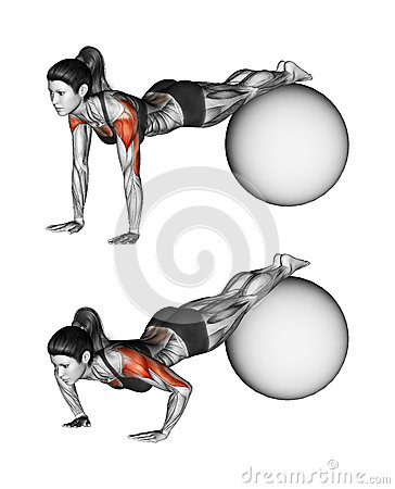 Free Fitball Exercising. Push-ups With Feet On Fitball. Female Stock Images - 45779684