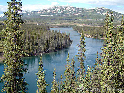Fiume di Yukon