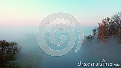 Fiume nascosto nella nebbia video d archivio
