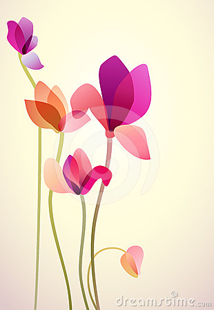 Five bright wild flowers