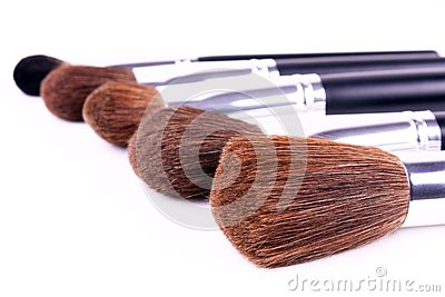 Five brushes for makeup