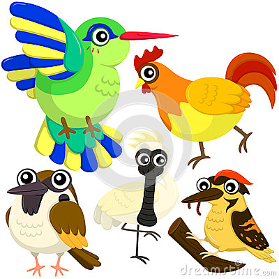 Five colorful cute birds