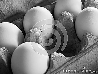 Five eggs in soft, dim light