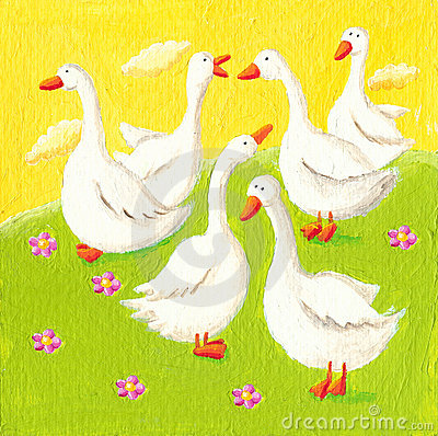 Free Five Funny Geese Royalty Free Stock Photos - 19454538