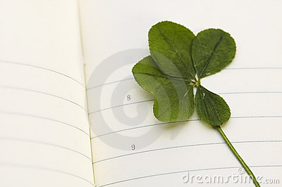 Five Leaf Clover and New Day.