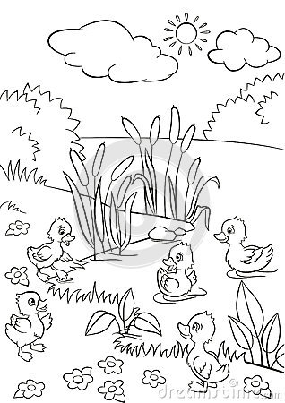 Little quack coloring pages home sketch coloring page for Little quack coloring pages