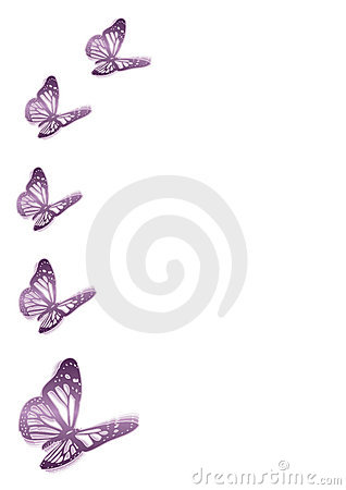 Five purple butterflies