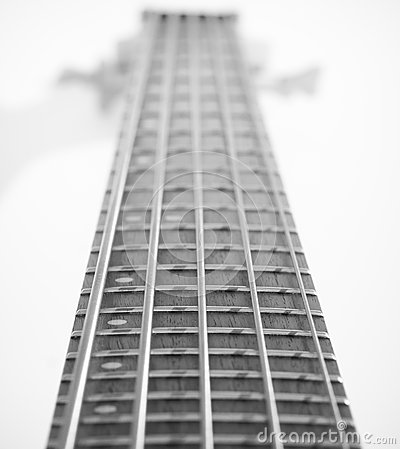 Five String Bass Guitar