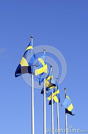 Five Sweden flags
