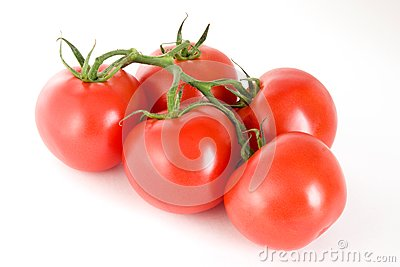 Five tomatoes on a stem