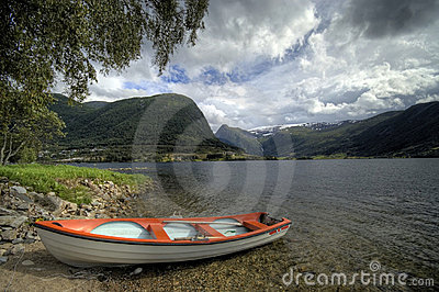 Fjord boat under tree