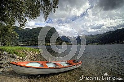 Fjord boat under tree